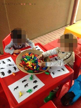 animal play activity