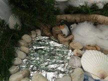 winter play provocation