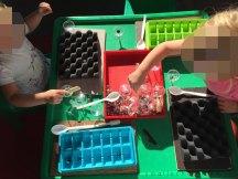 sorting tray02