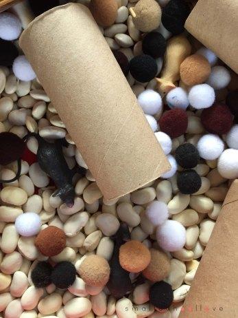 mice sensory box2