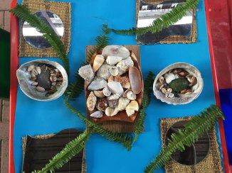 fern and shells