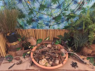 insect play provocation