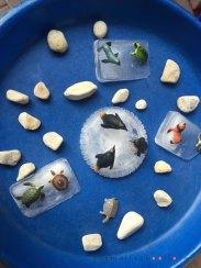 ice small world